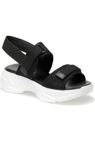 Butigo 19S-342 Siyah Kadın Sandalet