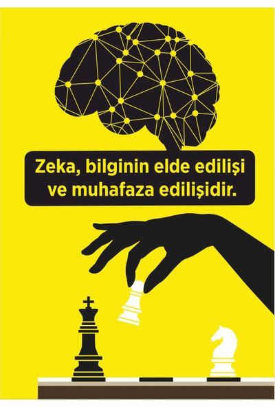 Okulposteri Akıl ve Zeka Oyunları Poster 2 100 x 150 cm
