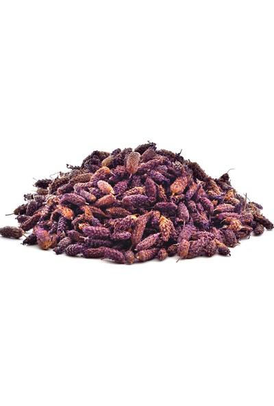 Şifamarketim Karabaş Otu Bitkisi 250 gr