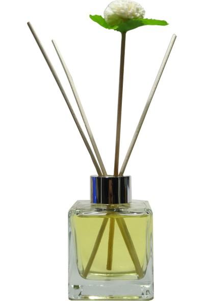 Paradise Bambu Oda Parfüm Kavun
