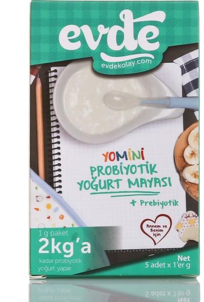 Evde Yomini Yoğurt Mayası 5'li Paket
