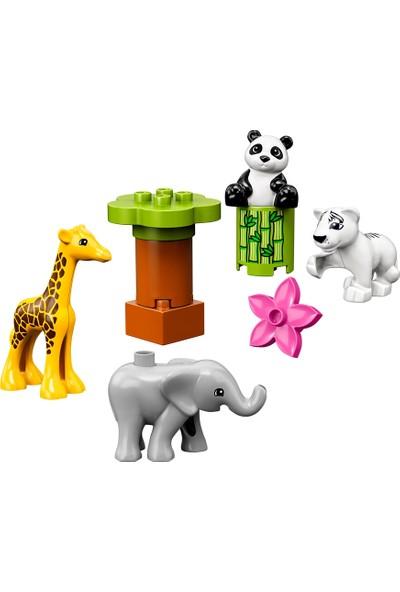 LEGO DUPLO 10904 Yavru Hayvanlar