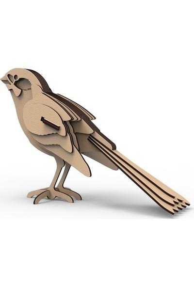 Mekafen Eğitim Mekafen Akademi Ahşap 12 Parça Kuş 3D Ahşap Maket Seti