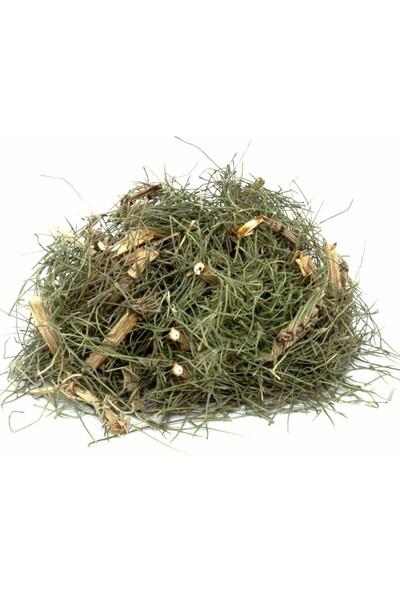 Lokman Aktar At Kuyruğu Otu (Kırkkilit Otu) (Equisetum Arvense) 100 gr