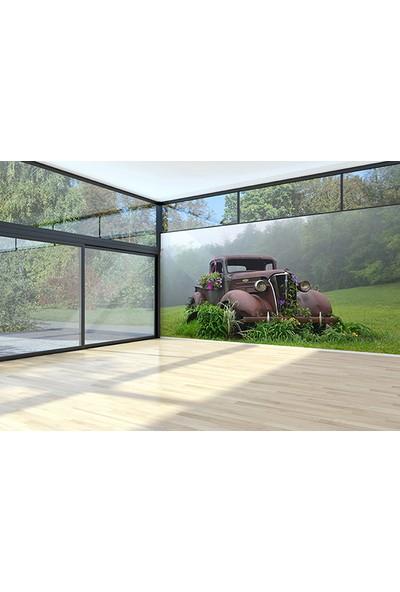 Moda Duvar Doğayla Bütünleşmiş Araç Duvar Kağıdı Tek Parça Kanvas 200 x 260 cm ARC-HR-10317006