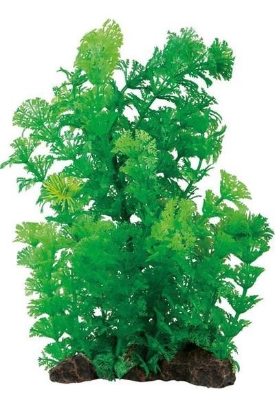 Aquatic Plants Akvaryum Plastik Bitki 20 Cm