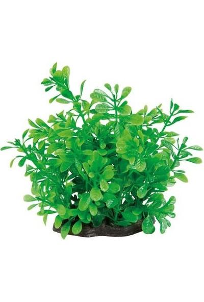 Aquatic-Plants Yeşil Akvaryum Plastik Bitki