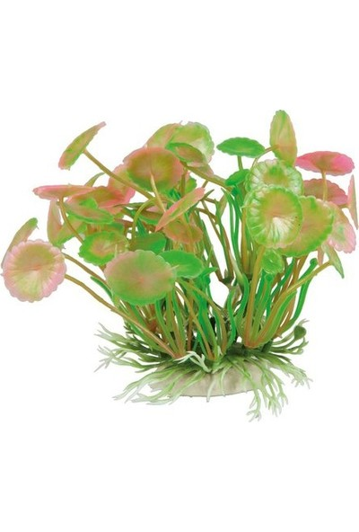 Aquatic Plants Plastik Açık Pembe-Yeşil Bitki 11 Cm
