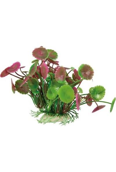 Aquatic-Plants Pembe-Yeşil Akvaryum Plastik Bitki 11 Cm