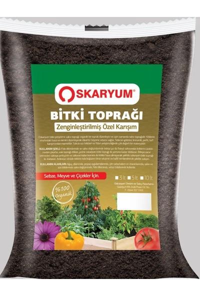 Oskaryum Fesleğen Tohumu 100'lü + Oskaryum Bitki Toprağı 3 lt