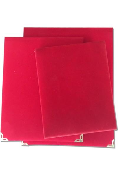 4 Renk Kişiye Özel Teşekkür Tebrik Başarı Plaketi 15 x 20 cm