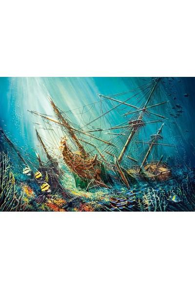 Castorland 1000 Parça Okyanus Hazinesi Puzzle
