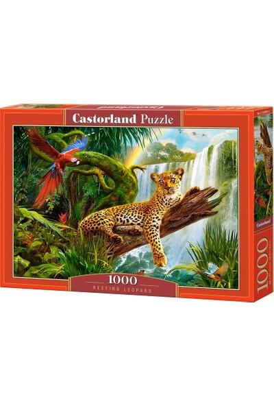 Castorland Puzzle - Dinlenen Leopar Ve Renkli Papağan - 1000 Parça