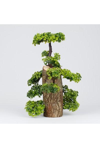 Bappay Minyatür Yapay Bonsai Ağacı