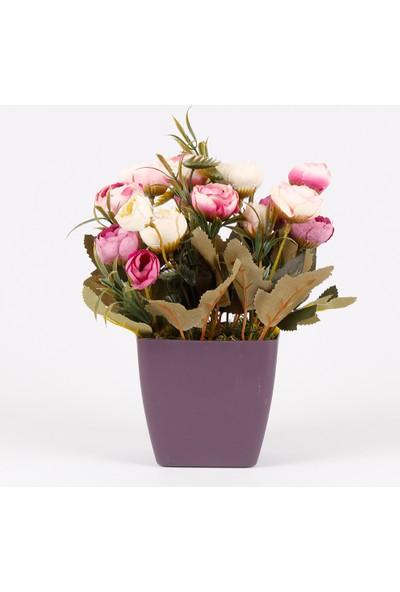 Bappay Dekoratif Çiçek Saksıda Şakayık Çiçeği