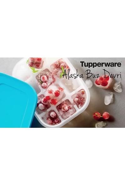Tupperware Alaska Buzluk 2'li