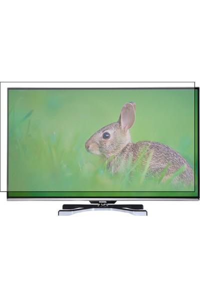 """Vestel 120 Ekran 47"""" Evrensel Universal Televizyon Ekran Koruyucu"""