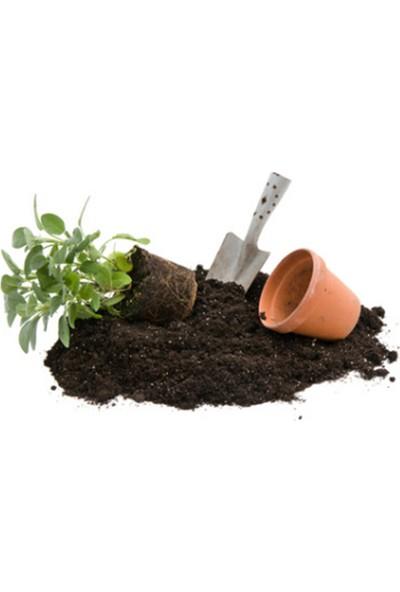 Bahçe Li̇fe Çi̇mlendi̇rme Torfu Özel Npk Katkılı Profesyonel Çi̇mlendi̇rme Torfu 20 lt
