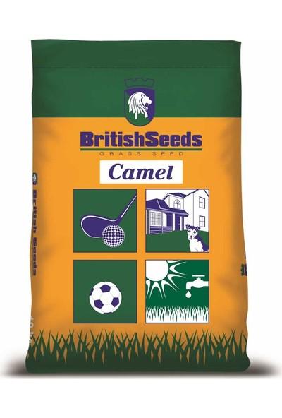 British Seeds Camel Kurak Bölgeler İçin Çim Tohumu - 5 Kg