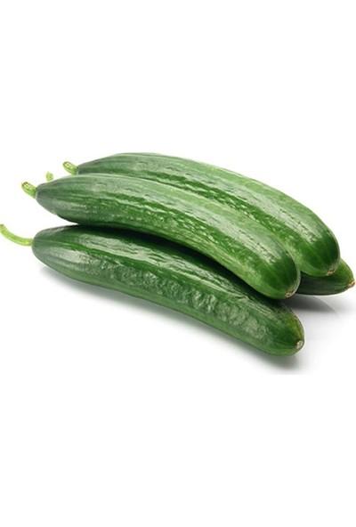 Kaleli Gurme Salatalık 1 kg