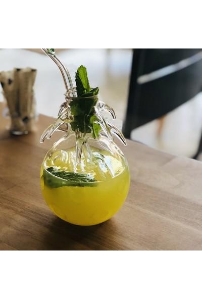 1200 Derece Ananas Kokteyl Bardağı