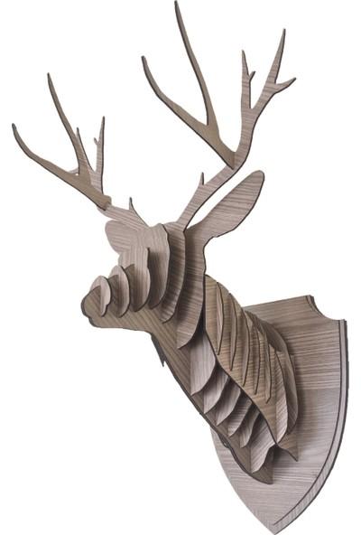Stdesigyn 3D Geyik Ev Dekorason