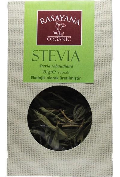 Rasayana Organik Stevia 20 gr