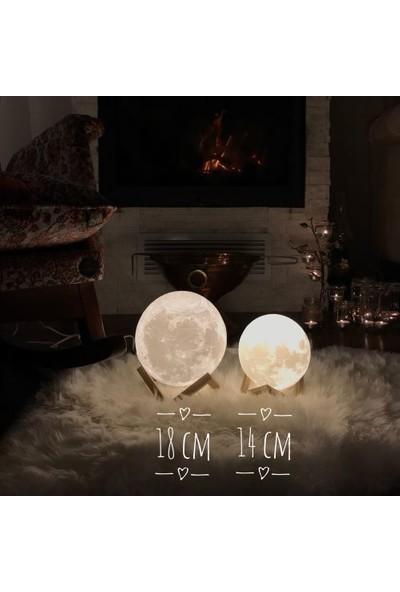Minda Ay Gece Lambası - Moon Lamp
