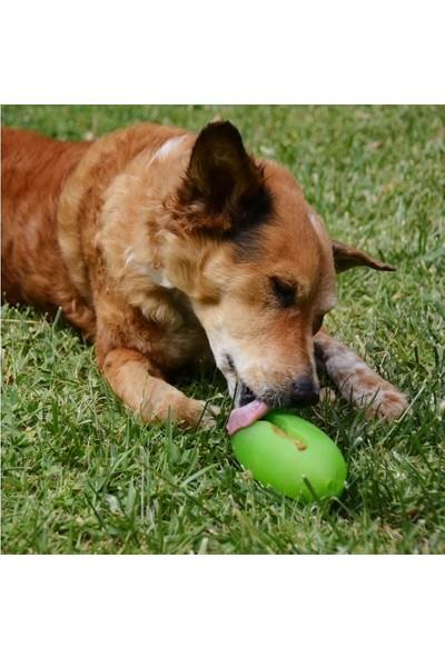 Starmark Pickle Köpek Isırma Topu