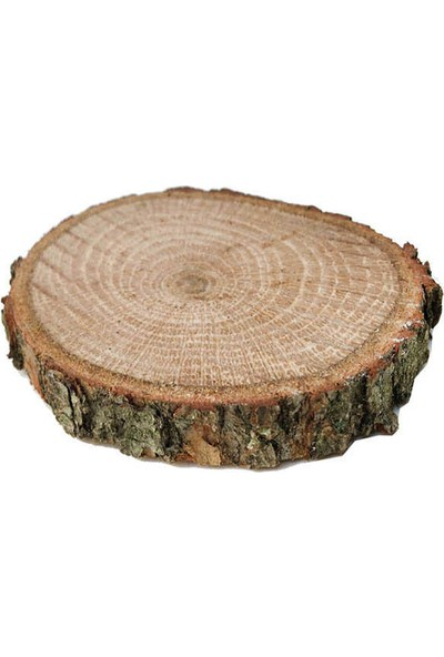 Kullan At Market Ağaç Kütük Yükseltici Palamut Meşesi Pakette 5 Adet