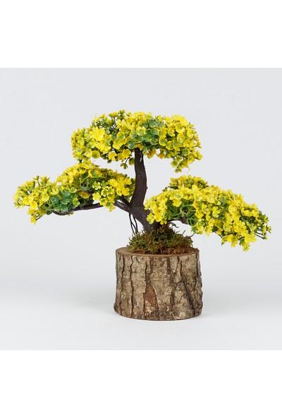 Bappay Doğal Kütük Saksıda Dekoratif Yapay Çiçek