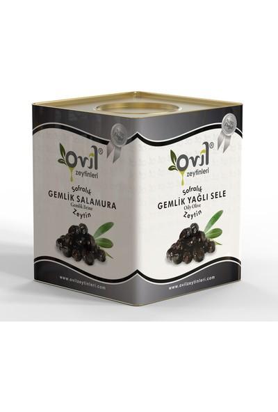 Ovil Siyah Zeytin Gemlik Tipi Yağlı Sele 381-420 10 kg