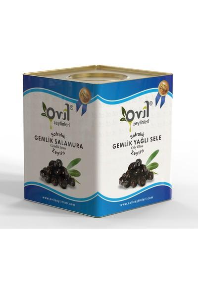 Ovil Siyah Zeytin Gemlik Tipi Yağlı Sele 321-350 10 kg