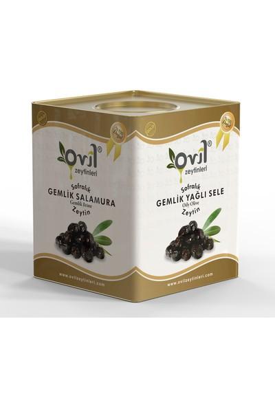 Ovil Siyah Zeytin Gemlik Tipi Yağlı Sele 261-290 10 kg