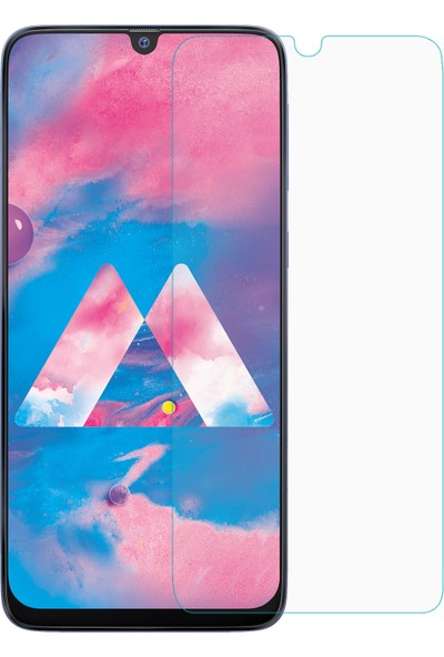 Microsonic Samsung Galaxy M30 Temperli Cam Ekran Koruyucu
