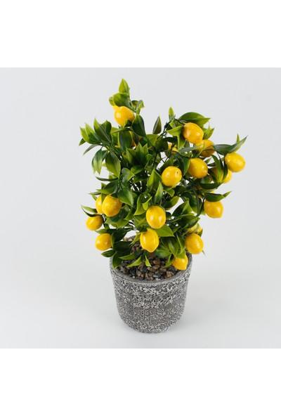 Bappay Porselen Görünümlü Saksıda Yapay Limon Ağacı