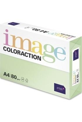 Hp Coloraction A4 Fotokopi Kağıdı Açık Yeşil 500LÜ