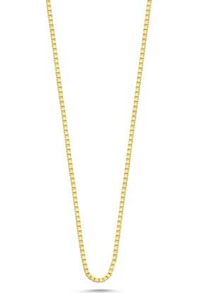 Aypa Mücevher Is00018-55 55 Cm Sarı Altın Zincir