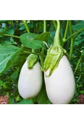 İdeasepet Naturel Casper Beyaz Patlıcan Tohumu (10 Tohum)