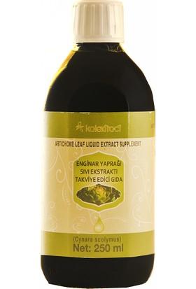 Kale Naturel Kalextract Enginar Yaprağı Sıvı Ekstraktı 250 ml