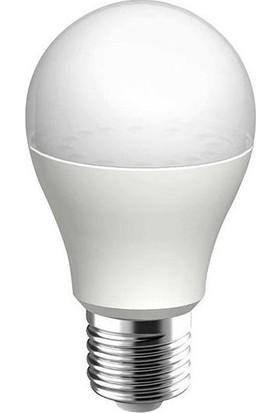 Horoz 5 Adet 12W Led Ampul E27 Duylu 6400K Beyaz Işık Premier-12 001 006 0012