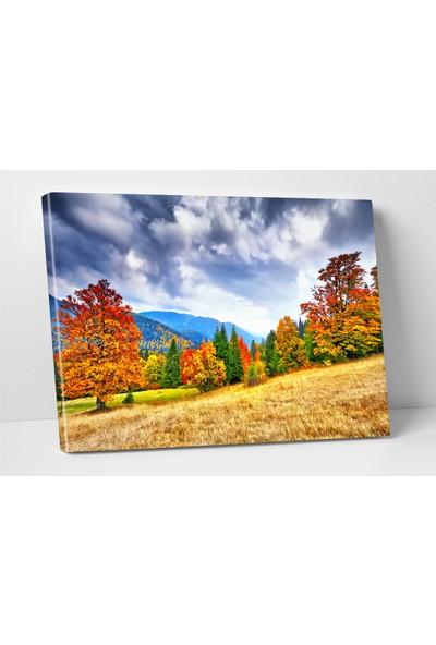 Modacanvas By Cadran 70 x 100 cm Kanvas Tablo FDC045