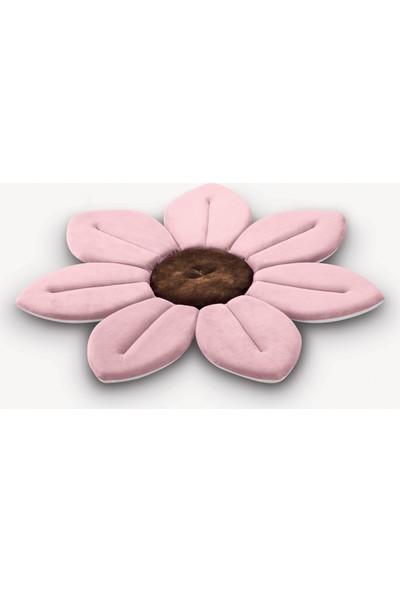 Bellis Banyo Çiçeği