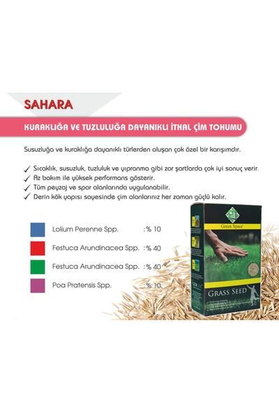 Gürçim Green Space Çim Tohumu Kuraklığa ve Sıcağa Dayanıklı Mix 10 kg