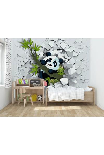 Moda Duvar Panda 3D Çocuk Odası Vinil Duvar Kağıdı 100 x 100 cm ACF-60017212