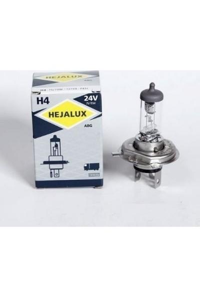 Hejalux Far Ampülü (T) 24V 75/70W