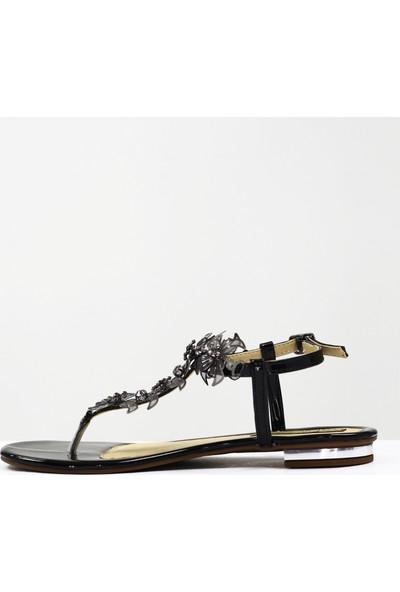 Nellson Jackson Aestate Siyah Kadın Yazlık Deri Taşlı Parmak Arası Sandalet