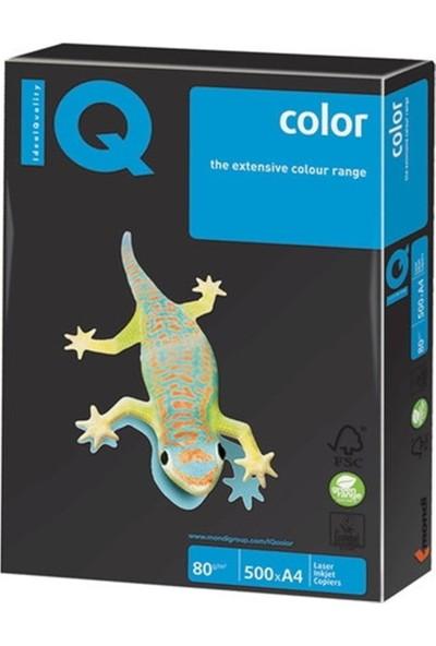 Iq NE1341-OG52 Renkli Kağıt A4 80GR/500 Siyah Koli ( 5 Li Paket )