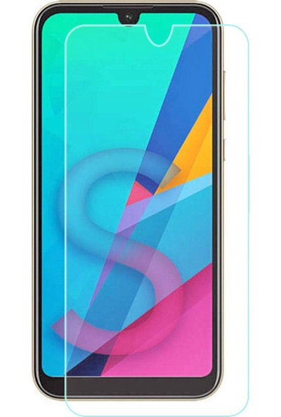 Microcase Huawei Y5 2019 Tempered Glass Cam Koruma