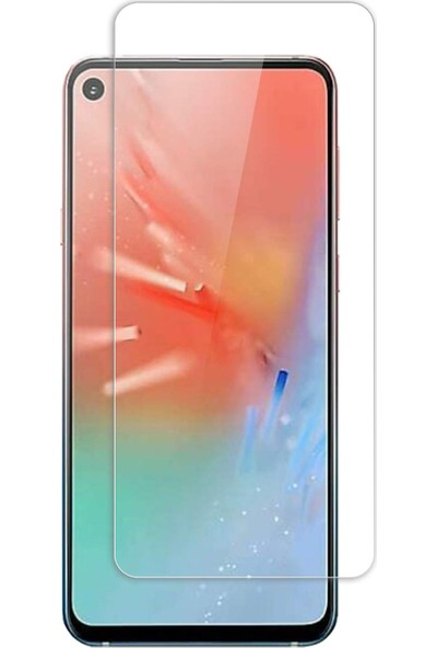Microcase Samsung Galaxy A60 Tempered Glass Cam Koruma